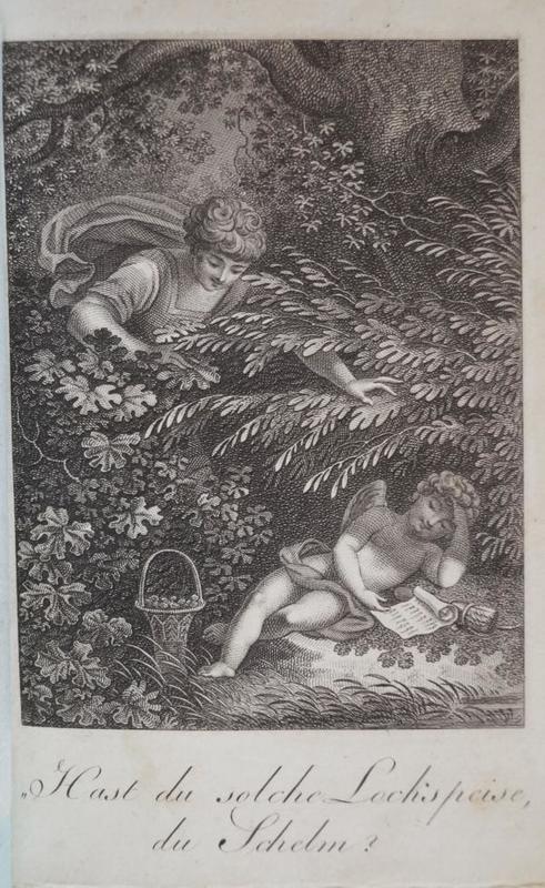 Taschenbuch der Grazien 1806