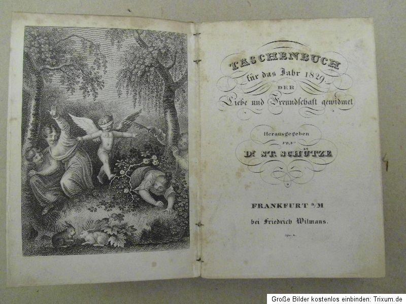 TaschenbuchDerLiebeUndFreundschaft1829.Titelkupfer.jpg
